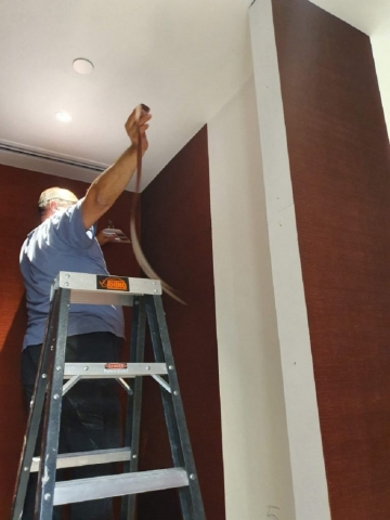 Wallpaper Installation in Melbourne